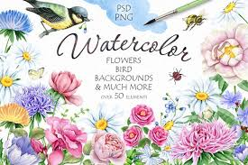 Flower And Bird - 30 watercolor flowers and bird illustrations creative market