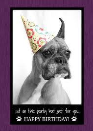 boxer dog sayings i put on this party hat just for you happy birthday card