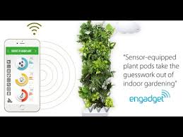 plug u0026 plant smart wall garden now available youtube