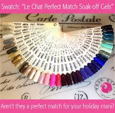 Perfect Match Colors Swatch Le Chat Perfect Match Soak Off Gels Phoenix Beauty Lounge