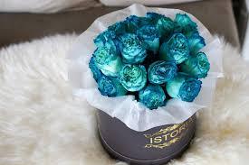 blue roses delivery blue roses auckland delivery exclusive florist unique flower