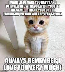 Happy Life Meme - cute cat meme imgflip