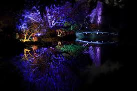the enchanted woodland syon park things to do in london