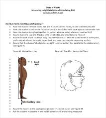 height weight chart templates u2013 12 free excel pdf documents