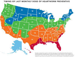 Which State Has The Most Dog Owners Per Capita According To 2016 Stats Unknown Facts About Dog Heartworms