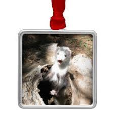 photo of ferret ornaments u0026 keepsake ornaments zazzle