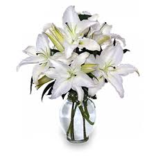 casablanca lilies casablanca lilies flowers by emily leawood ks 66211