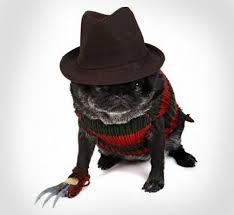freddy krueger costume freddy krueger dog costume