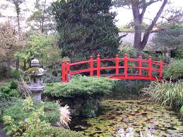 japanese garden pictures the most beautiful gardens and parks in durban