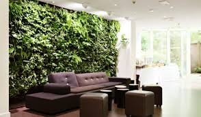 small indoor garden ideas plant indoor green plants enrapture green leaf indoor plants