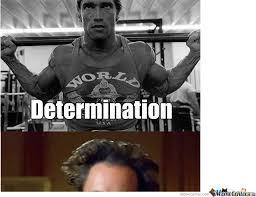 Arnold Meme - arnold determination by ariannadoll meme center
