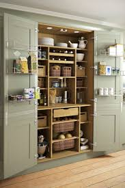 Kitchen Cabinet Interior Organizers by 25 Best Larder Cupboard Ideas On Pinterest Kitchen Larder