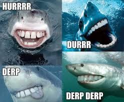 Know Your Meme Derp - tumblr l0kapni0vu1qzjmabo1 500 jpg 49464 derp know your meme