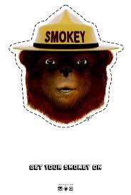 38 best smokey the bear images on pinterest smokey the bears