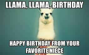 Niece Meme - happy birthday meme for nephew niece birthday hd images