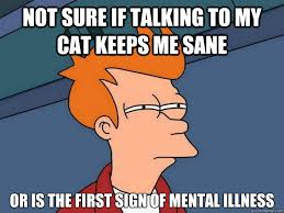 Talking Cat Meme - not sure if talking to my cat keeps me sane or is the first sign of