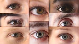 13 things you didn u0027t know about eyes youtube