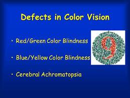 Blue Yellow Color Blind Part 1 Part 1 Sensory Processing Vision Part 2 Other Sensory