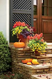 colorful flower gardens fall container gardening ideas southern living