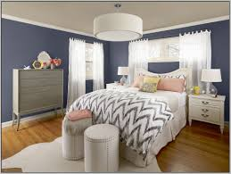 Grey Accent Wall by Download Bedroom Colors With Black Furniture Gen4congress Com