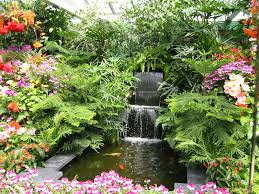 Small Water Features For Patio Water Feature Photos Plant Professionals Miami Fl