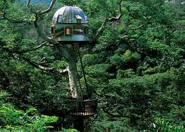 famous tree houses top12 most unusual tree house ideas wirecyber com