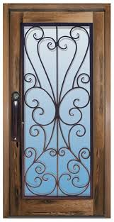 metal front doors with glass 329 best iron doors images on pinterest wrought iron windows