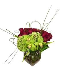 newport florist orchids and roses by newport florist nf231