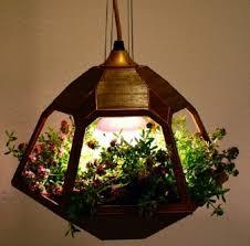 best terrarium garden container planting ideas 18 wonderful