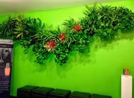 Indoor Plant Design by Indoor Plant Design Trends For Orange County Offices And Homes