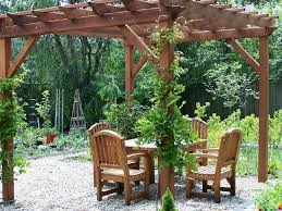 wooden pergola with climbing plants add outdoor interest with a