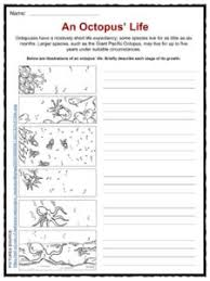octopus facts worksheets u0026 habitat information for kids