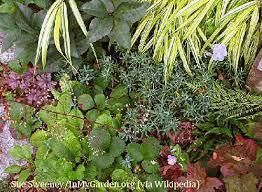 edible shade gardens
