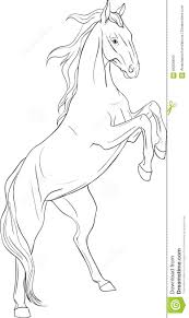 coloring page with horse stock vector image 66226843