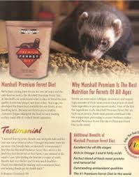 40 83 45 99 ferrets are strict carnivores and require meat based