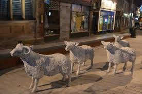 our new ornamental sheep in the high picture of lockerbie