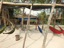 our hammock area well these aren u0027t all our hammocks covered
