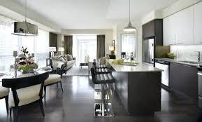Modern Condo Kitchen Design Condo Kitchen Remodels Small Condo Kitchen Design Small Kitchen