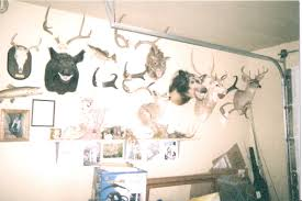 trophy room garage p other big game coueswhitetail com