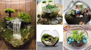the history of the terrarium
