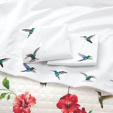 embroidered ambrosia hummingbird sateen flat sheet