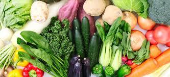cuisiner les l馮umes sans mati鑽e grasse cuisine diététique et sans graisse à l omnicuiseur vitalité