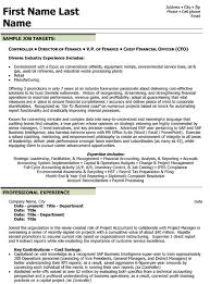 resume cfo controller cfo sample resume chief financial officer