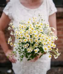 wedding flowers july wedding flowers a practical wedding a practical wedding we re