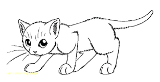 cat coloring pages images warrior cats coloring pages www glocopro com