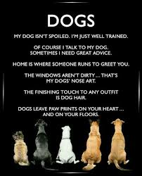 boxer dog sayings best 25 labrador quotes ideas on pinterest pet quotes