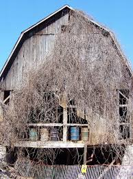 Pole Barns Rochester Ny 194 Best Barns Old U0026 New Images On Pinterest Country Barns