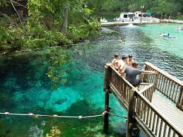 10 jaw dropping springs in florida snorkeling pinterest