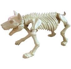 skeleton dog halloween prop koz1 halloween decorations