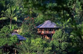hotel review como shambhala bali indonesia u2013 the luxury travel